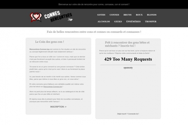 Découvrez Rencontres-Connes.top
